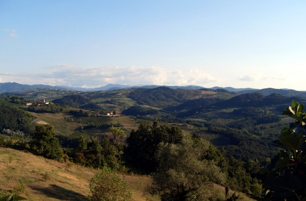 Hills of the Oltrepo