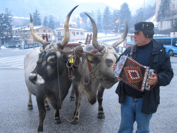 Peppe di Lillo plays a Pasquarella for his oxen